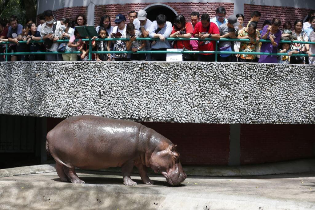 Dusit Zoo In Thailand