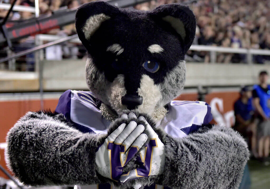 Washington Mascot
