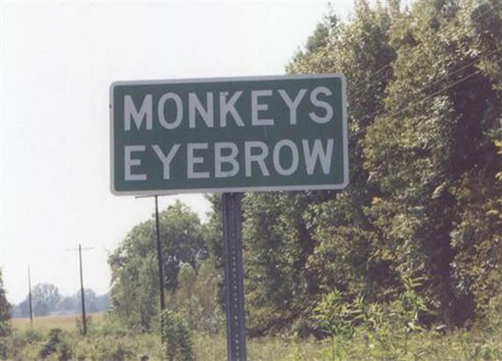 monkeys-eyebrow-sign