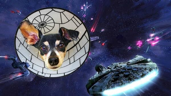 Death-Star-Cone-of-Shame-75162-76505.jpg