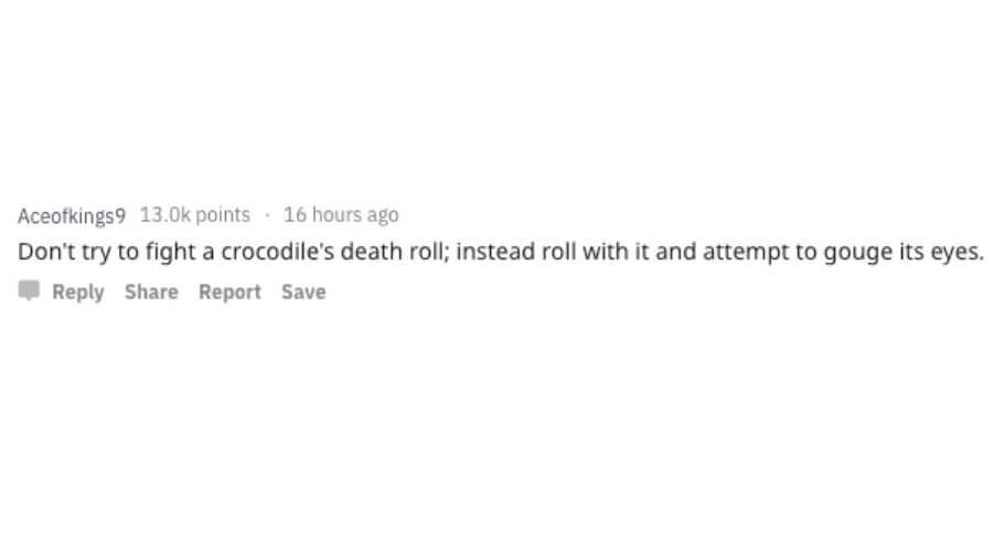 don't fight croc