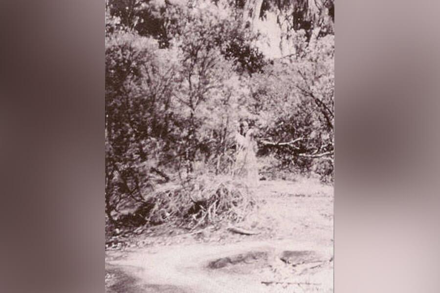 ghost of corroboree rock