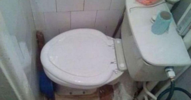 toiletwall-1024x538