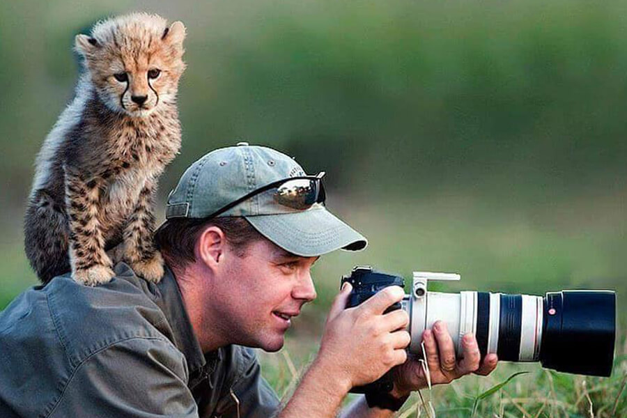baby cheetah on photographer