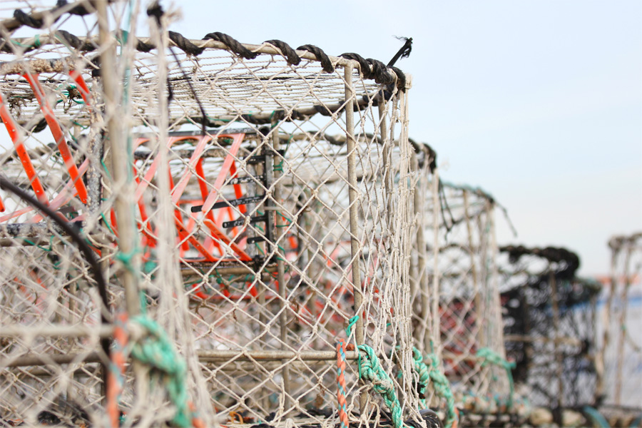 crab cages ready to be dropped