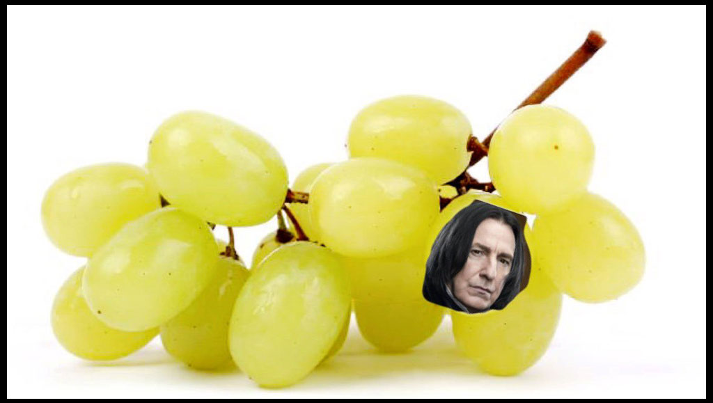 elf-on-shelf-snape