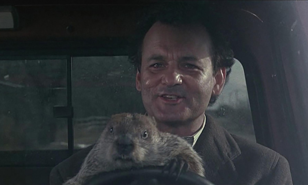 Trouble With The Groundhog