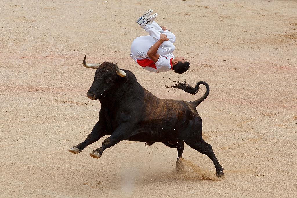 bull seman