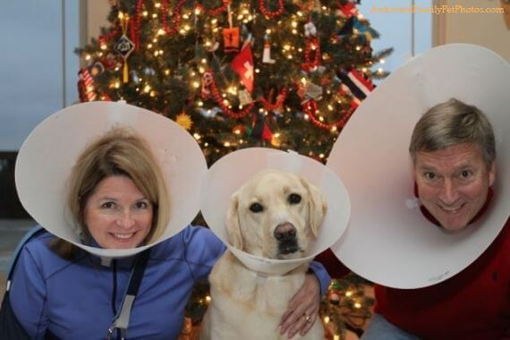 the-family-that-cones-together-34590-63729.jpg