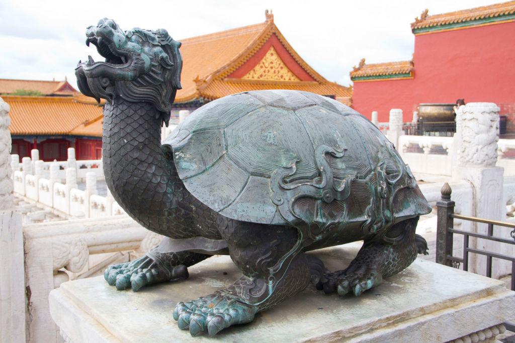 dragon turtle