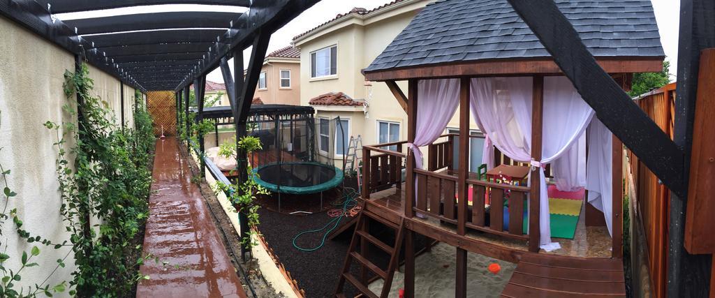 backyard5
