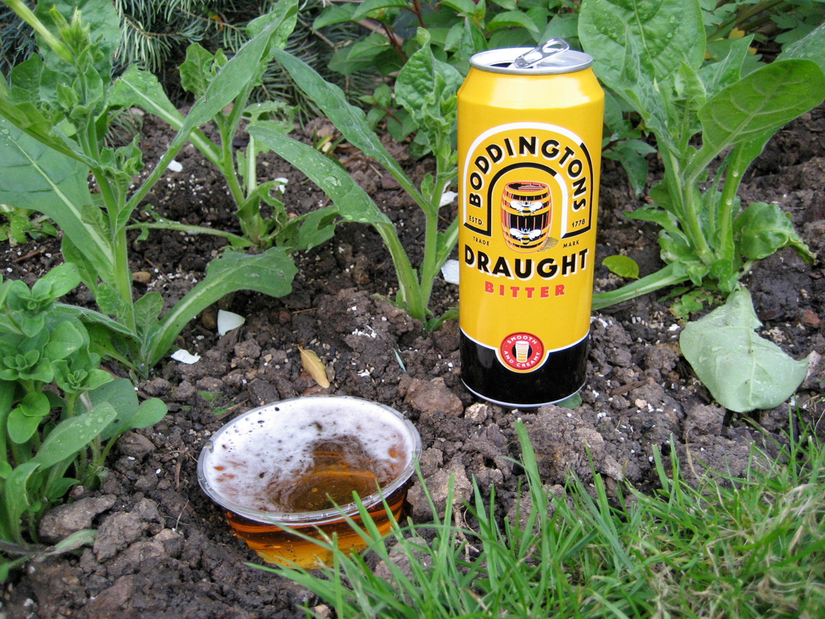 beer-slug-trap