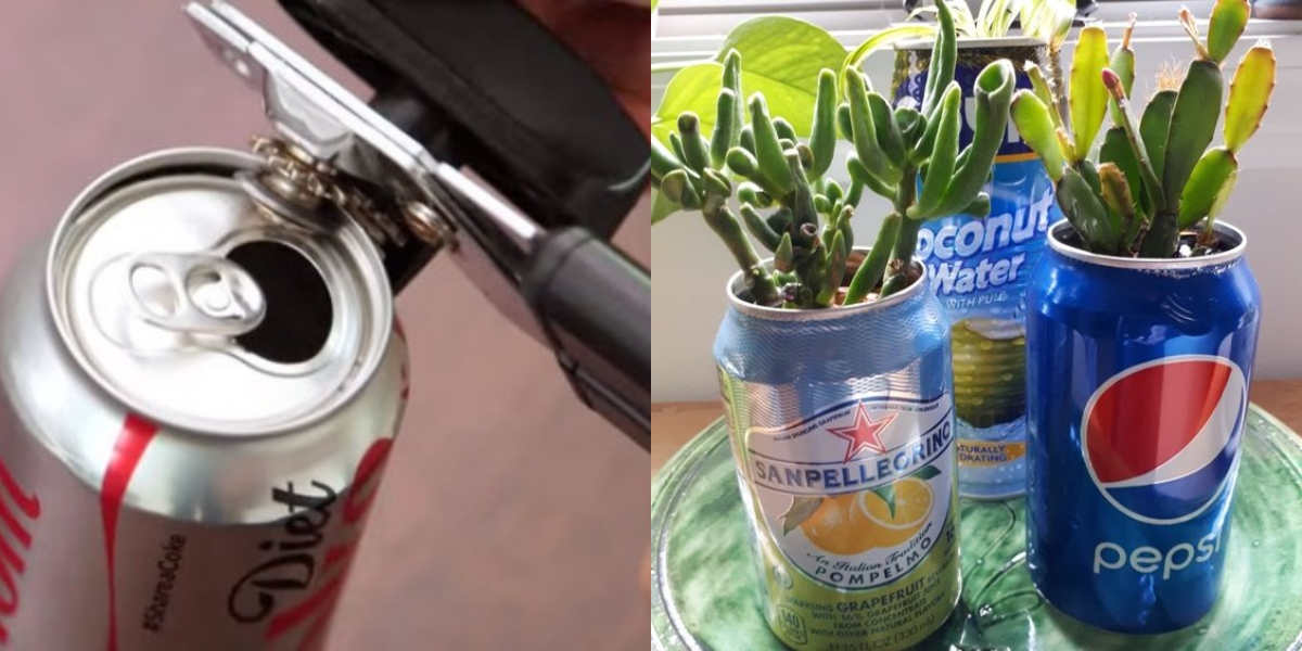 soda can planter