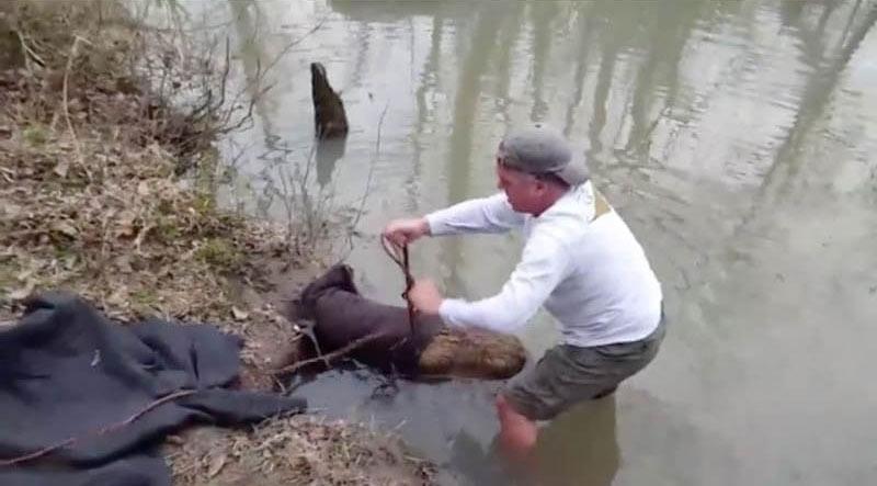 beaver-rescue-6-18407-91450