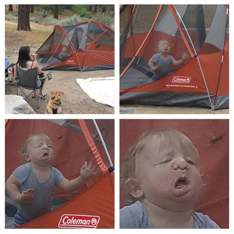 camping-toddler-52485