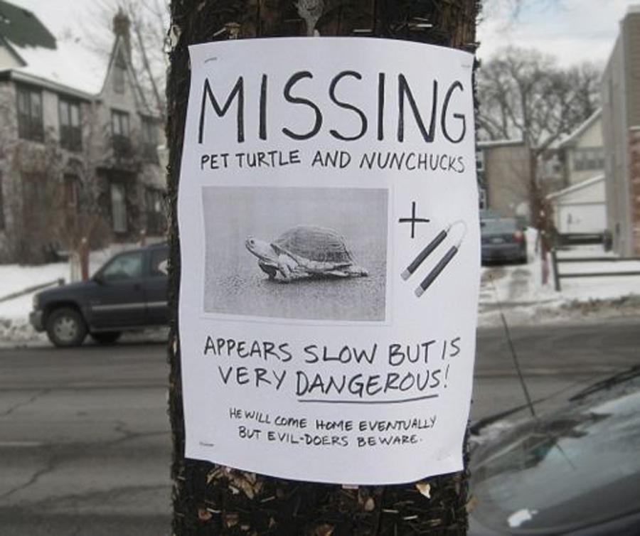 missing NINJA TURTLE ON THE LOOSE