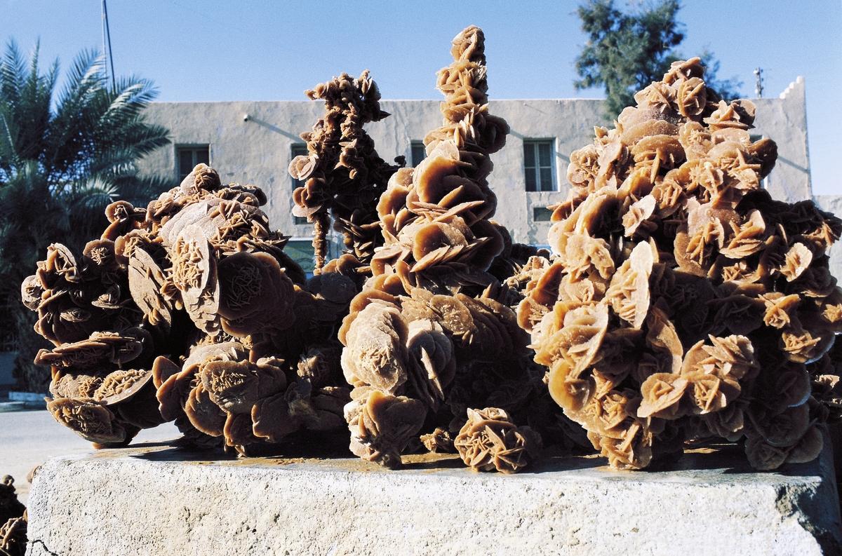 Desert Rose, crystal clusters of gypsum, Ouargla market, Algeria.