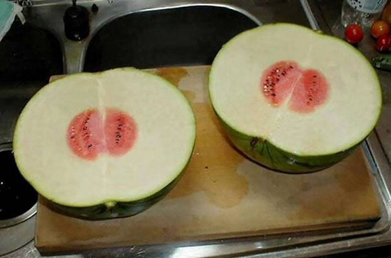 Watermelon Food Fail