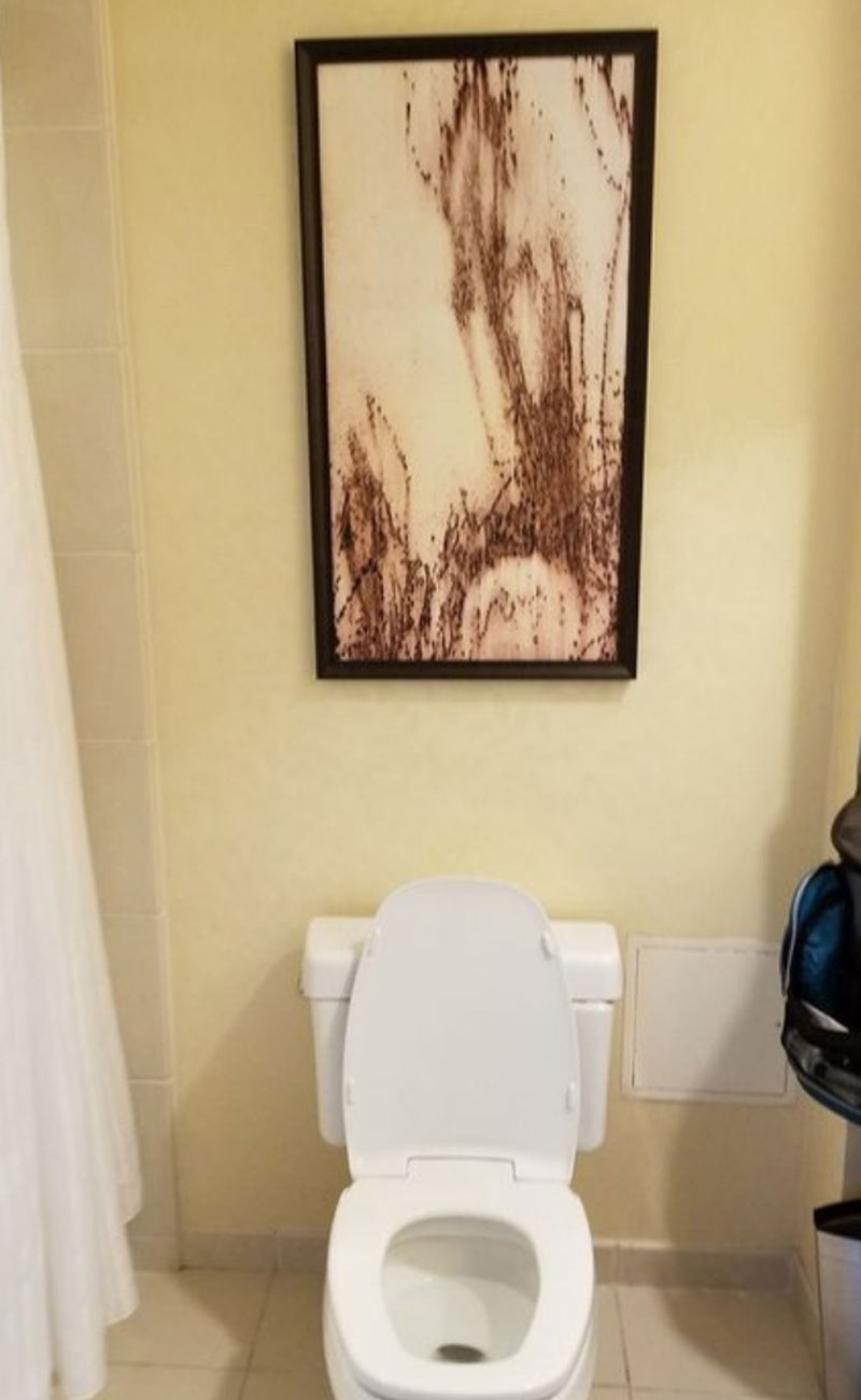 hotel fails disgusting artwork in bathroom