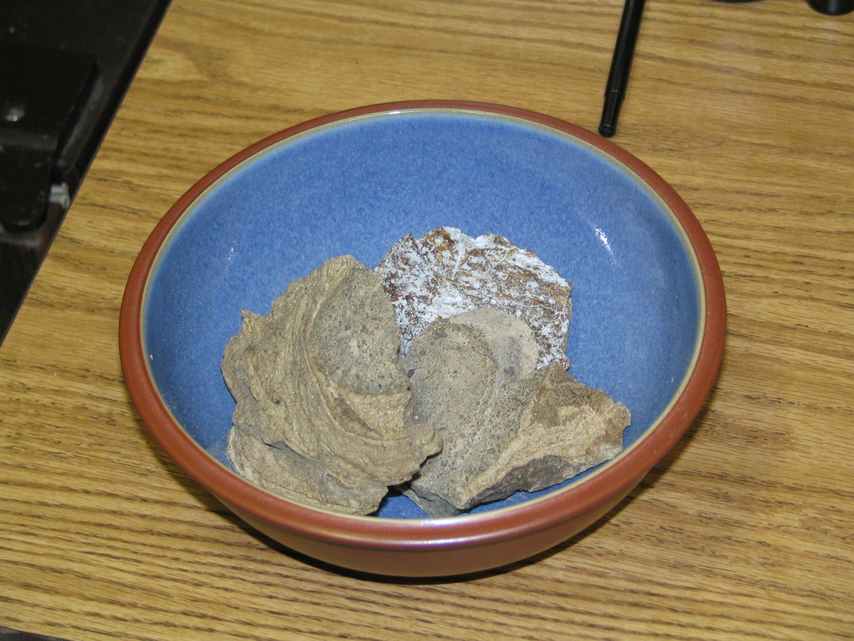 a bowl of real ambergris