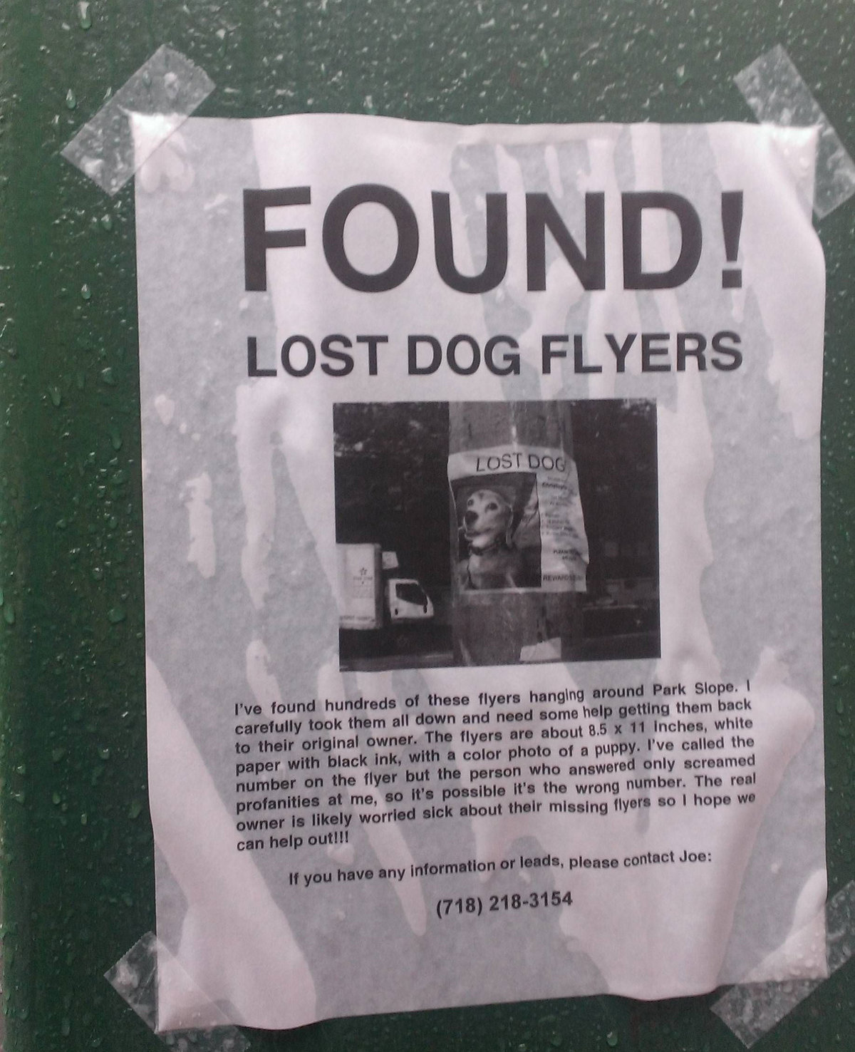 lost dog flyers have been found