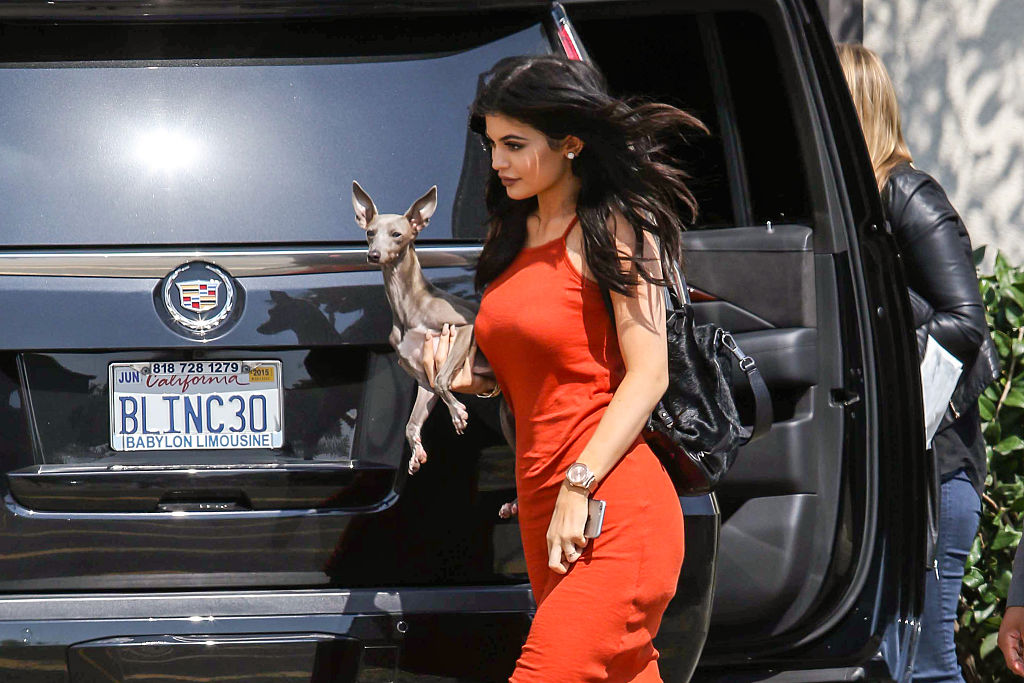 GettyImages-475796964-73465-23563 italian greyhound norman and kylie jenner