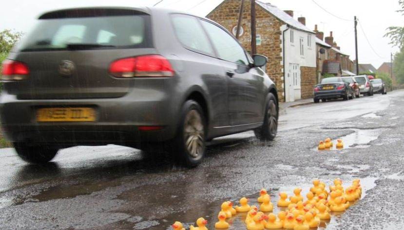 rubber ducks floating in a pothole in Steeple Ashton, England