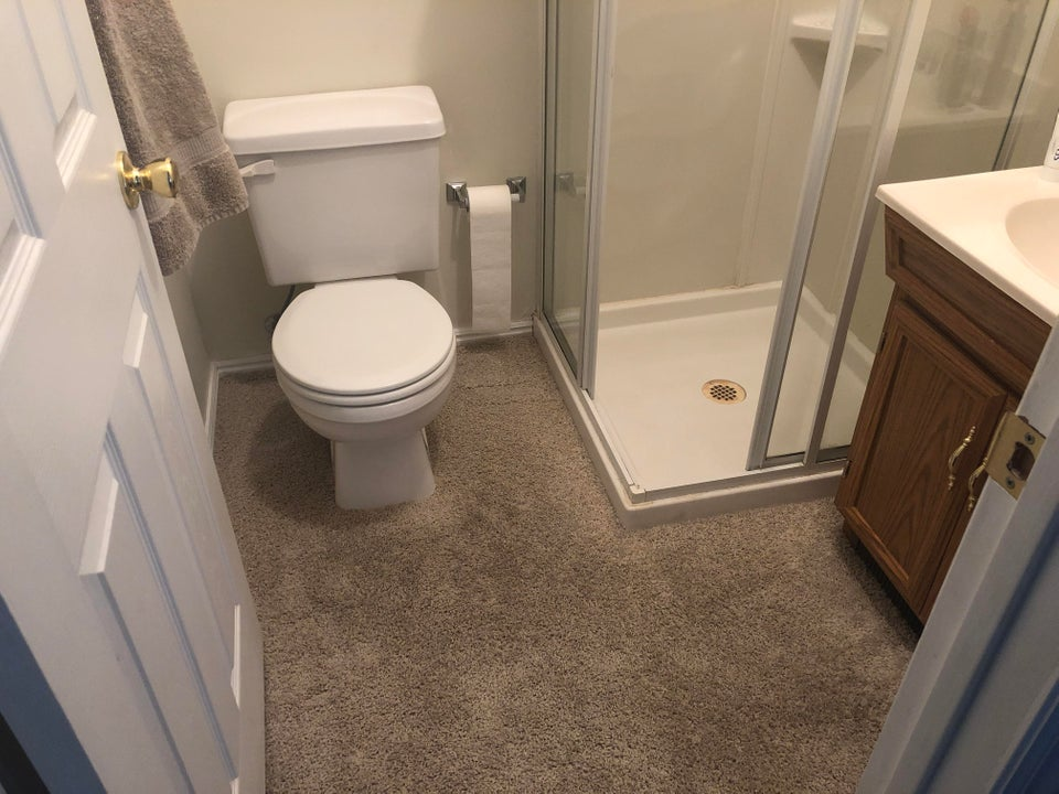 carpet in the bathroom has a weird feel to it and now we can't unsee this