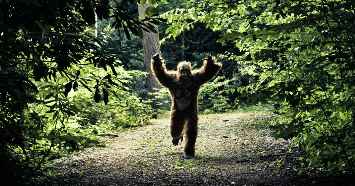 bigfoot running in the forest