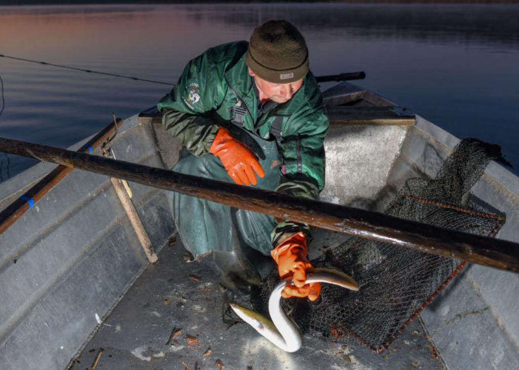 A fisherman holds onto an eel he caught in his net.