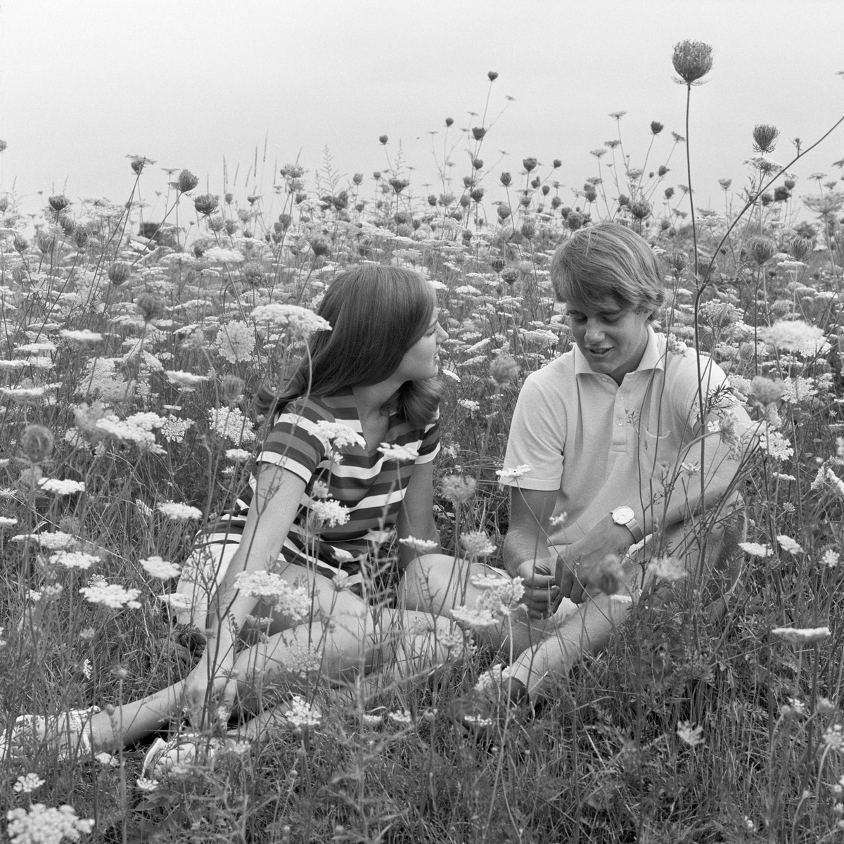 1970s TEENAGE COUPLE SITTING TOGETHER AND TALKING IN FIELD OF QUEEN ANNE'S LACE AND WILDFLOWERS