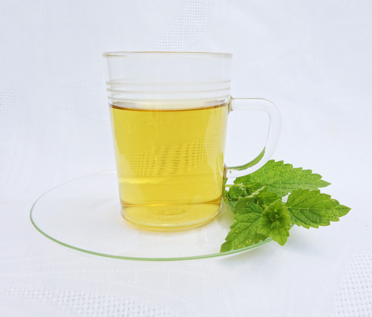 a cup of lemon balm tea