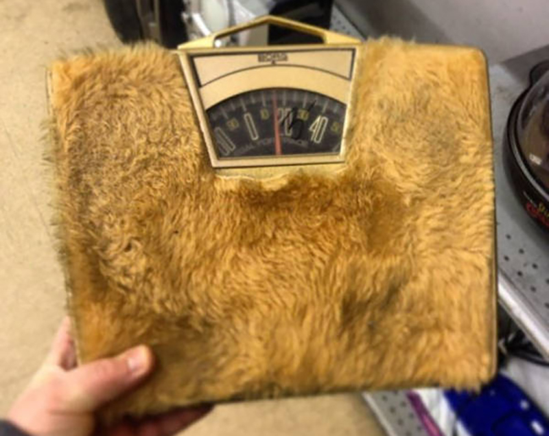furry measuring scale found at a thrift store