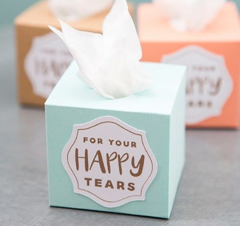 DIY_Mini_Wedding_Tissue_Boxes-87452