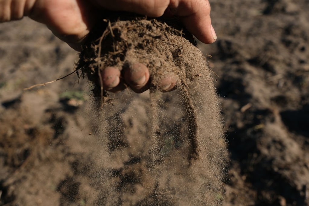 Man holding soil in his hand