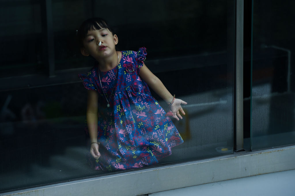 A little girl observes something stuck to the glass of a window