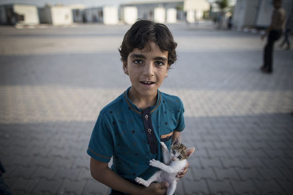 A boy holds a scared kitten with bared claws