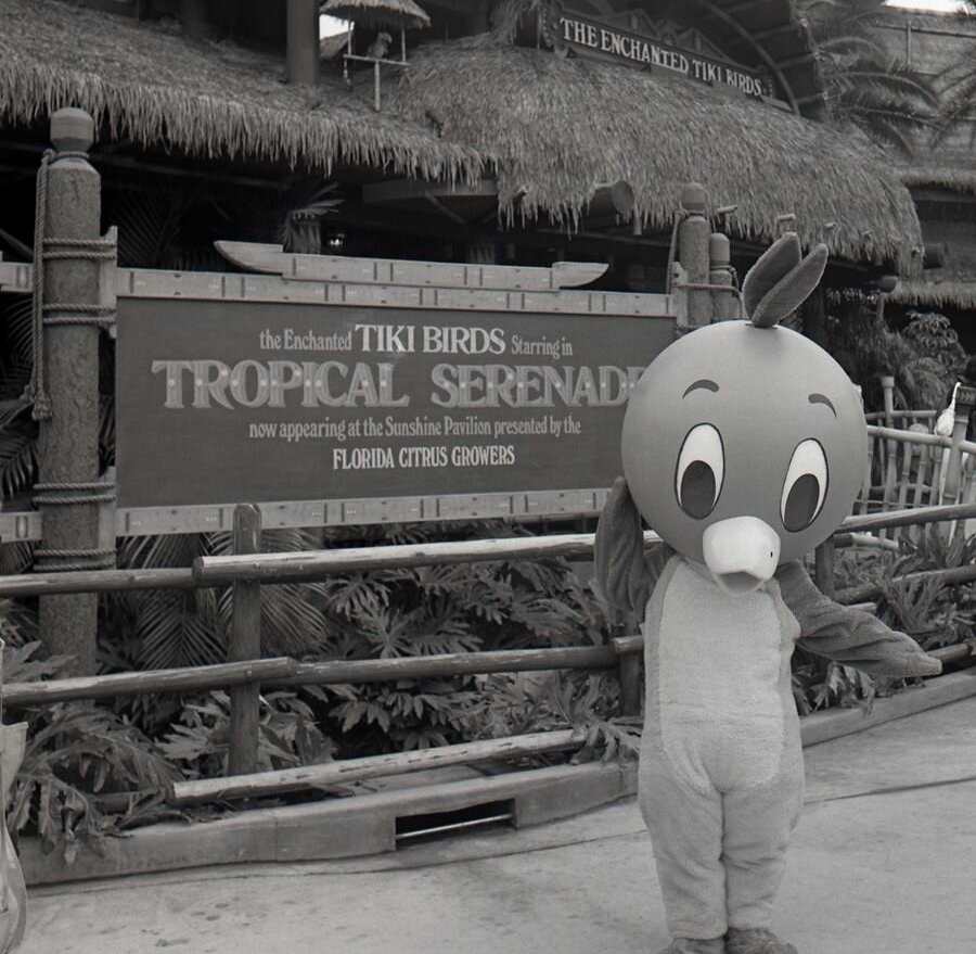 Orange_Bird_hanging_out_in_Adventureland_back_in_J-45520