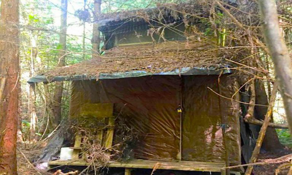 Scary cabin in the middle of the woods