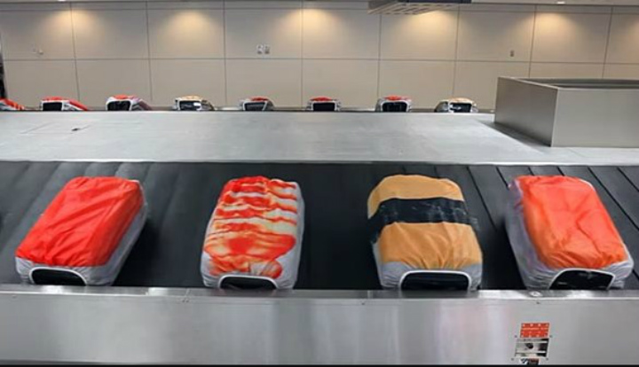 What Does Your luggage Look Like? Sushi.