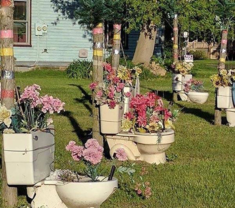 Various toilet are tied to trees and filled with flowers in a yard.