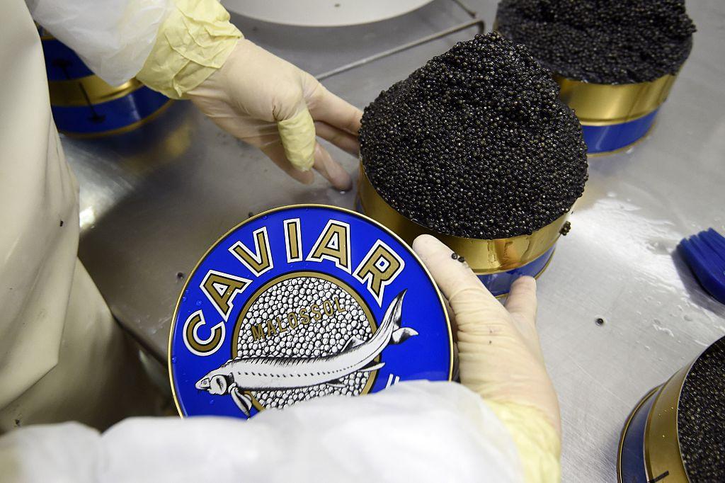 Caviar manufacturing