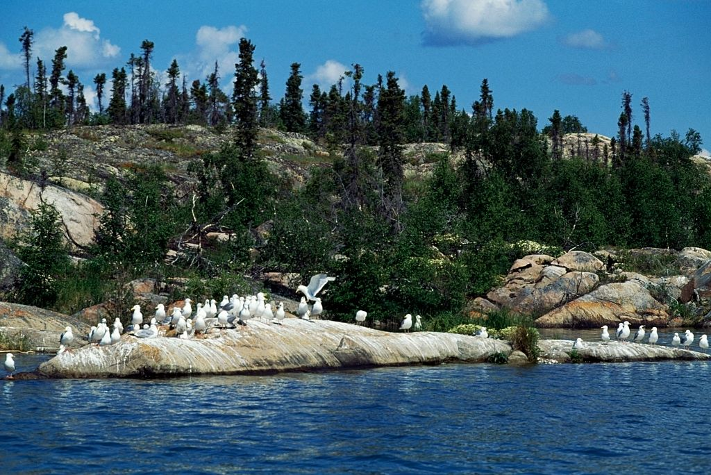 mysterious great slave lake in canada