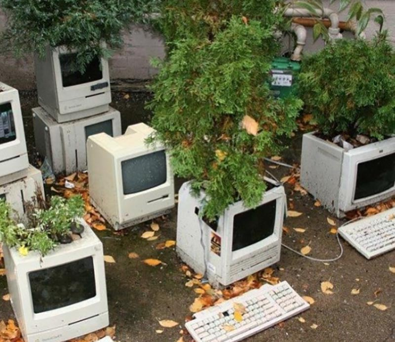 Old computers are used as pots for plants.