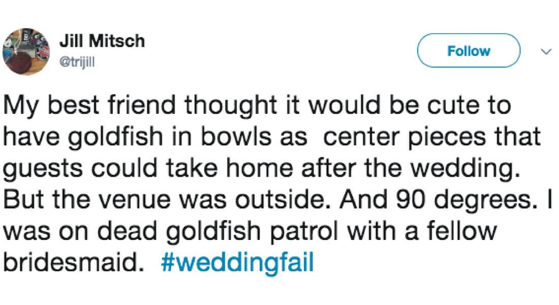 dead-goldfish-everywhere-48285-56499