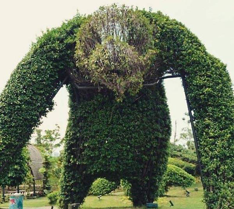 A giant hedge is shaped to look like a monster.