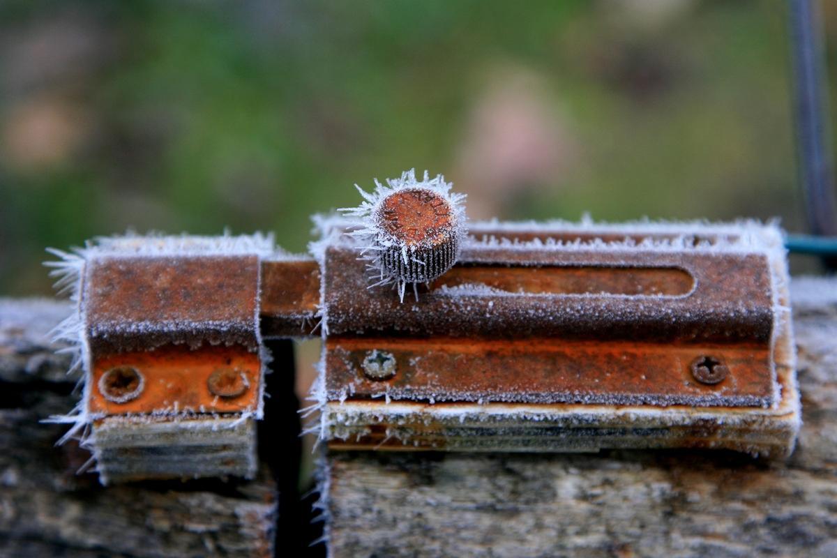 A rust-covered lock is frozen over.