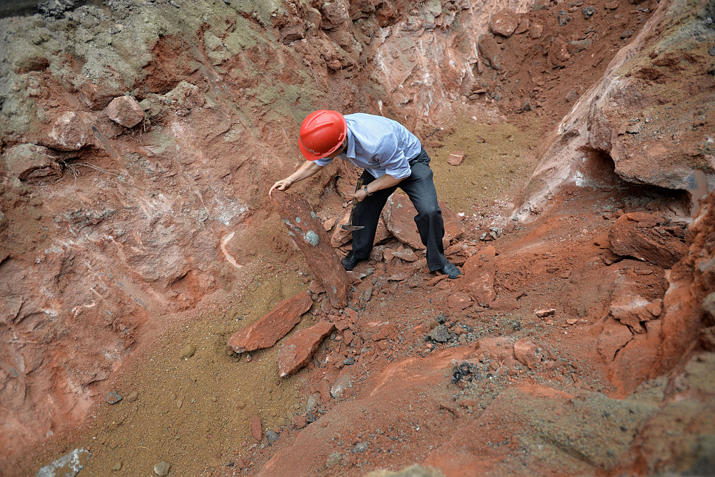 Man excavating dinosaur eggs