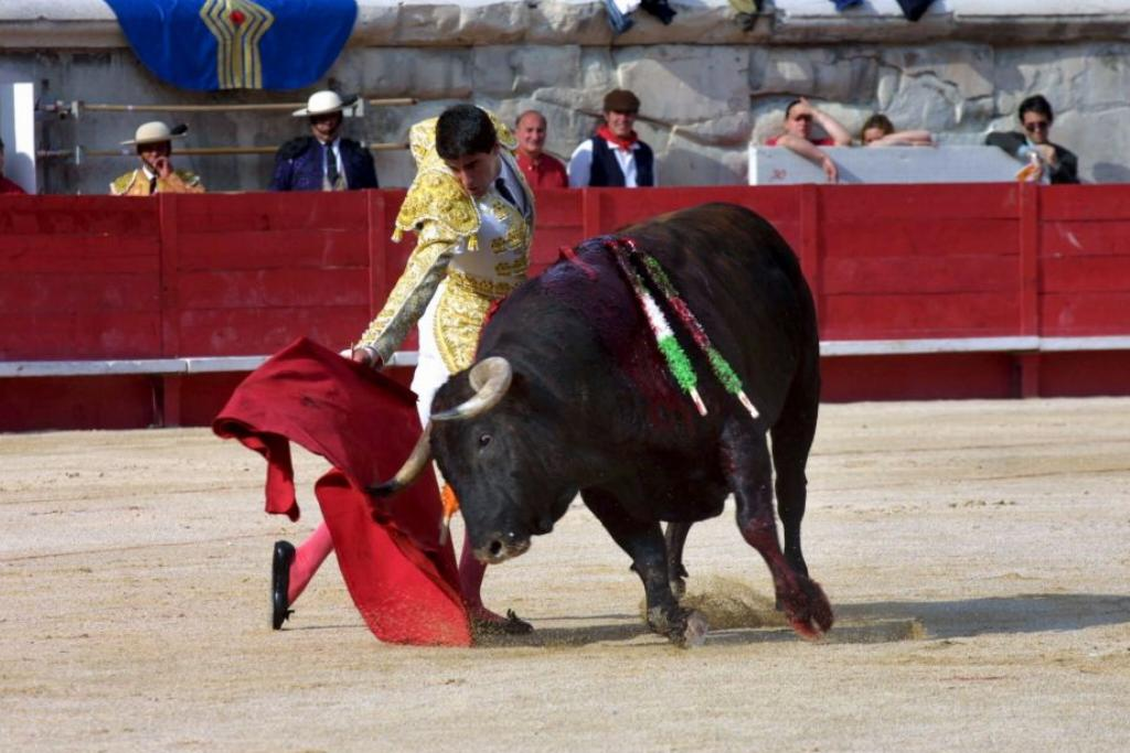 Bulls Hate Red