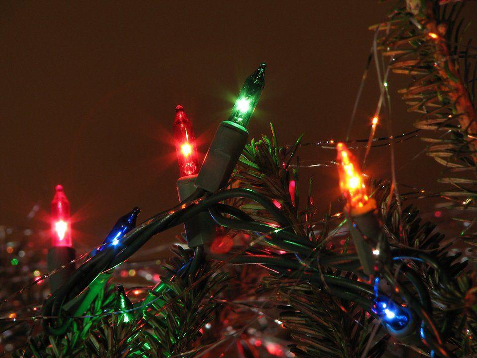 Lights on a tree